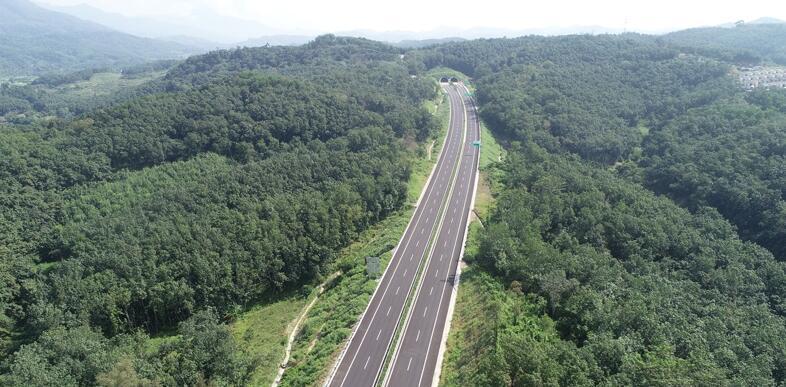 椰视频| 记者提前体验 琼乐高速沿线风景美不胜收