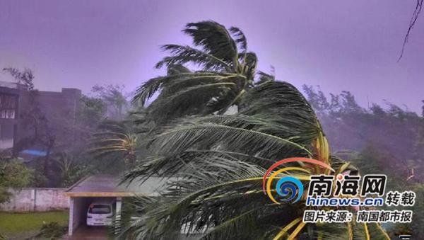 海南人文地理扫描|当海南人说起台风:只是被微风吹乱了发型