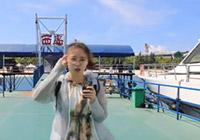 三亚潜水梦之旅