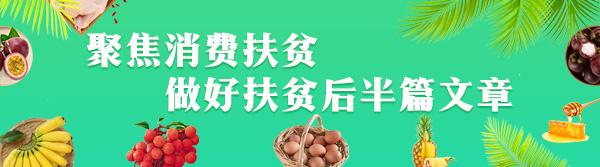 本周榜单出炉!定安喜获海南爱心扶贫网销量冠军