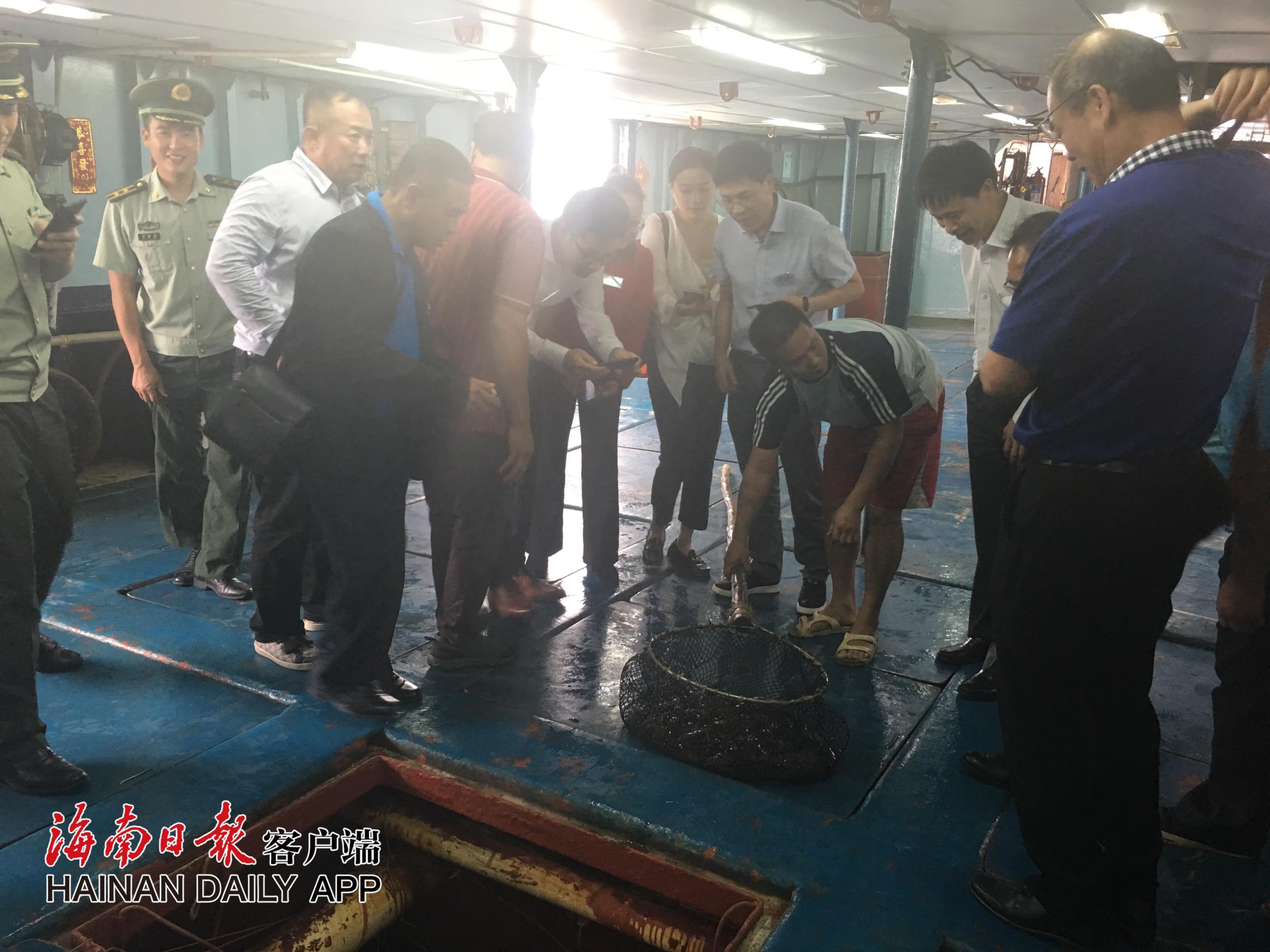 中国向菲律宾赠送第二批东星斑鱼苗14日于海南文昌清澜港启运