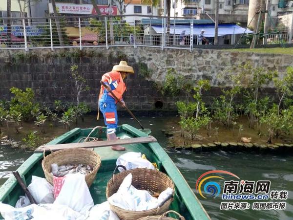 水咸鱼多海口美舍河近日常见死鱼 水务局称将申请放开垂钓