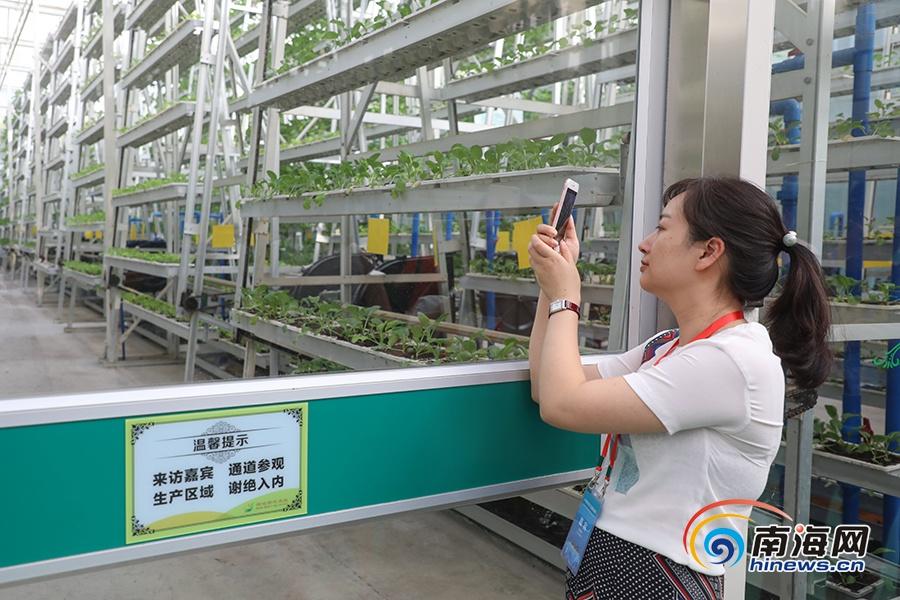 "<b>法新社关注海南农业 称""海南成亚洲农业创新的主要中心""</b>"