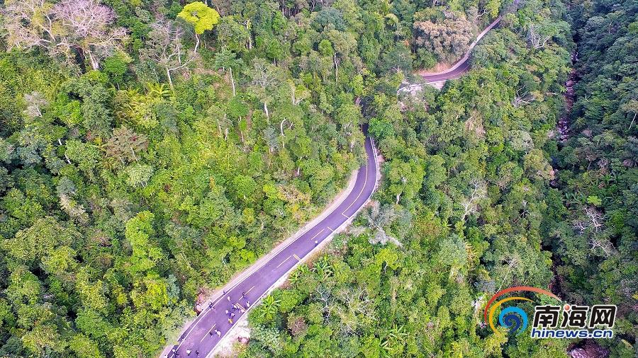 一路行程一路景!快跟记者去看看陵水吊罗山旅游公路